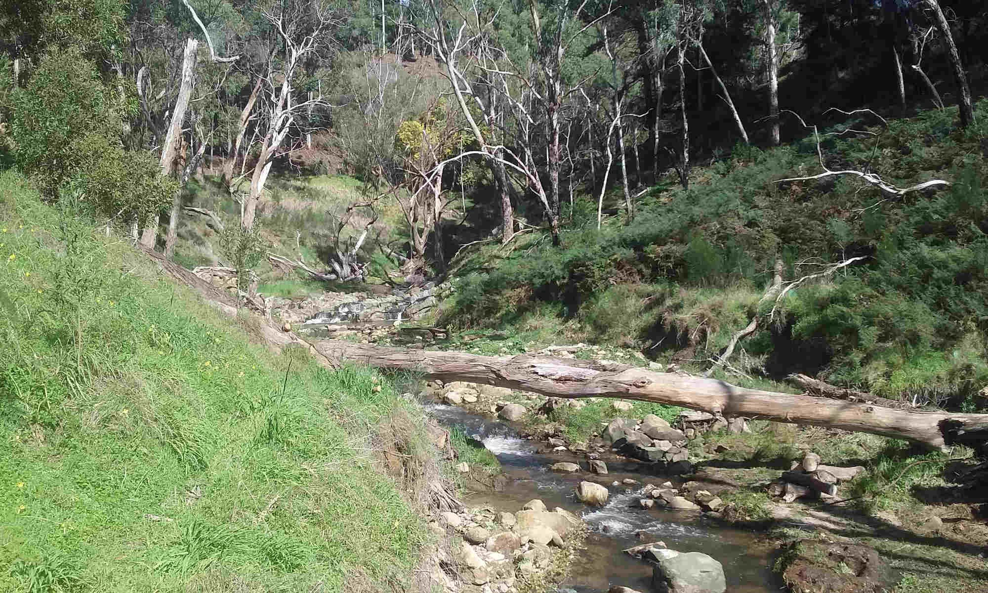 Sixth Creek Catchment Group